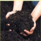 greeneem bio compost