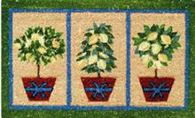 doormats rugs