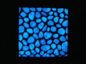 Manufacturer Of Glow In The Dark Products Ceramic Wall Tiles Gl Mosaic Stone