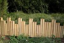 bamboo border edging rolled fence post rail fences
