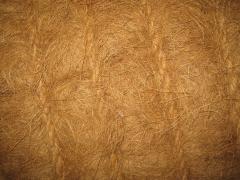 coir fiber mattress
