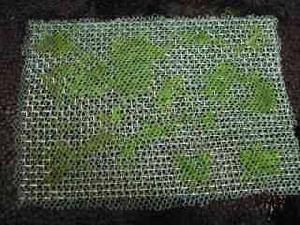 stainless steel sieving mesh