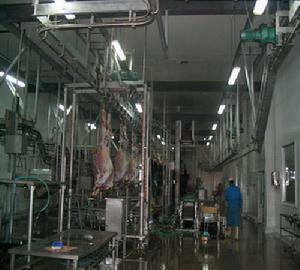 slaughterhouse equipment line