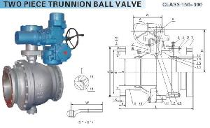 ball valve check valves