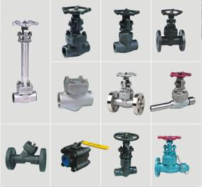 forgeg steel valves