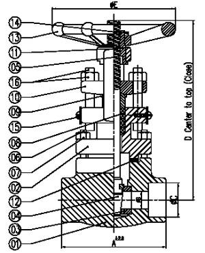 socket welded gate valve os y