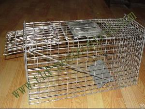 Catching Cat Trap Cage