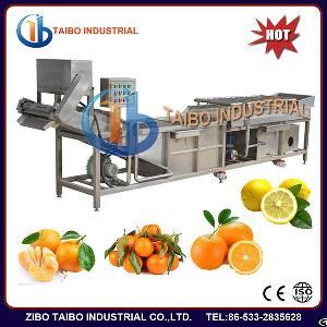 Vegetable Fruit Bubble Washing Machine