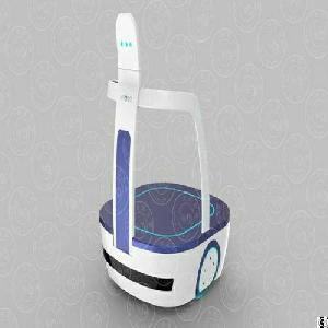 Airport Transfer Service Robot