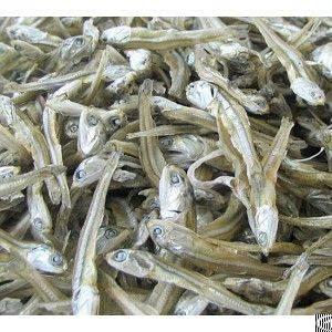 anchovy avocado baby shrimp coconut broom stick cocopeat straw mushroom