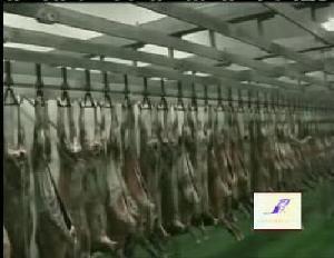 sheep slaughter abattoir equipment line