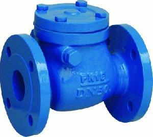din f6 cast iron swing check valves