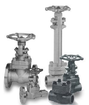 forged gatevalves globe valves