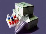 streptomycin elisa test kit