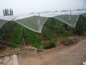 hdpe agriculture apple tree anti hail plantations