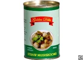 Peeled Straw Mushroom From Viet Nam