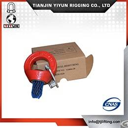 Hoists Safety Swivel Hoist Ring
