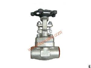 sw ends forged steel globe valve stainless class 800 socket welded