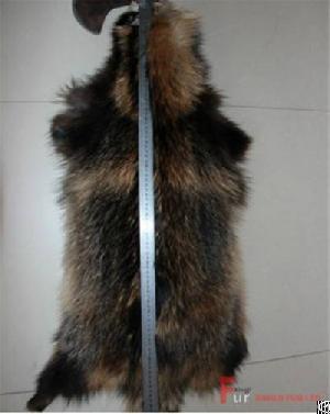 raccoon fur skin