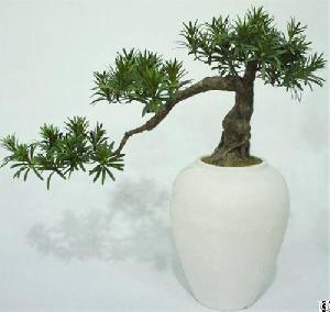 Artificial Podocarpus Bonsai Tree