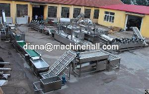 Automatic Frozen French Fries Production Line Manufacturer In China