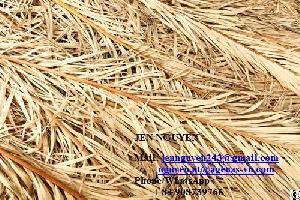 Dried Palm Leaf From Vietnam