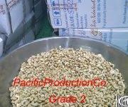 Cashew Vietnam Sw240