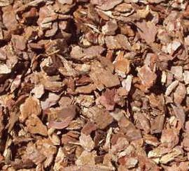 pine bark extract opc 95 uv antioxidant vitamin p
