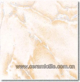 ceramic tile floor a1003