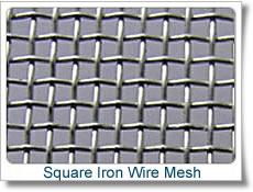 16 mesh electro galvanized square wire