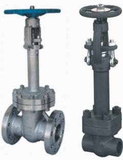 cast steel forged cryogenic gate valve