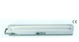 fluorescent emergency light