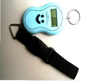 wholesaling portable electronic scales 5 40kg