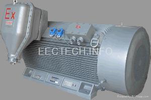 explosion proof motor