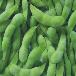 frozen soybean