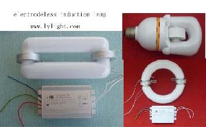 linear circle compact electrodeless induction lamp