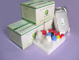 greenspring™ neomycin elisa test kit
