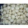 frozen champignon mushrooms
