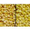 frozen sweet corn kernels