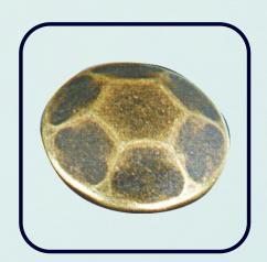 turtle shape jeans button