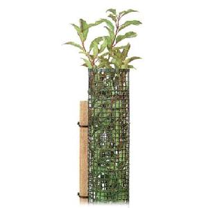 Tree Protector, Plant Protector And Support With Stake