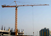 competent loyal tower crane