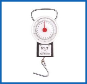 fishing scale 10kg 22kg abs ourter cover display iron hook handle
