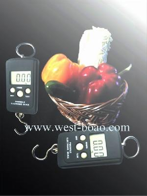 portable electronic family scale 50kg 20g