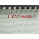 filter belt