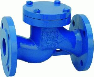 cast iron lift check valves