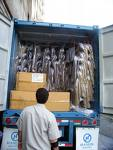 lcl sea freight shenzhen port ireland dublin cork limerick