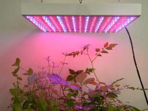 112 led panel grow light