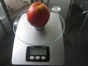 digital fruit scales kitchen scale electronic food wbk 04 5kg 1g