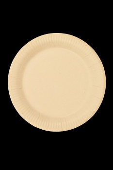 paper plates 7 9